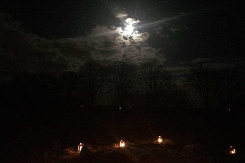 Lichtjeswandeling (Oostvaardersplassen)